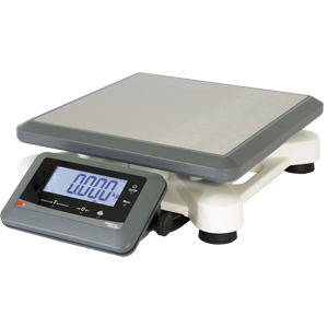 ready to weigh Ci5TP scale